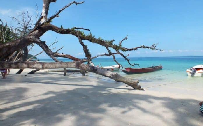 Elephant Beach Is An Attraction Place For Tourist In Andaman and Nicobar Islands