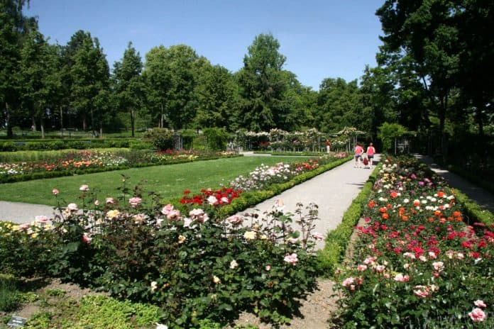 Rosengarten Is The Quietest Place Of Switzerland