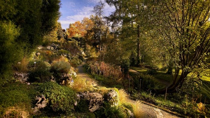 The Botanical Garden Of Bern Is The Best Places To Visit In Switzerland