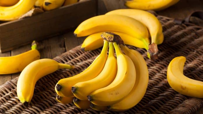 Benefits Of Bananas Why Bananas Are So Important