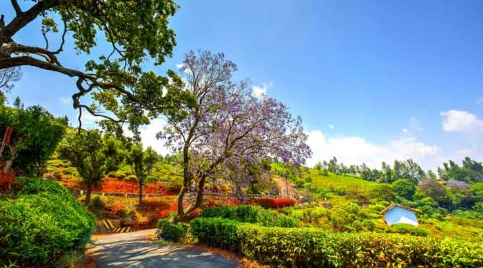 Coonoor India's Top Hill Station Place For Tourism