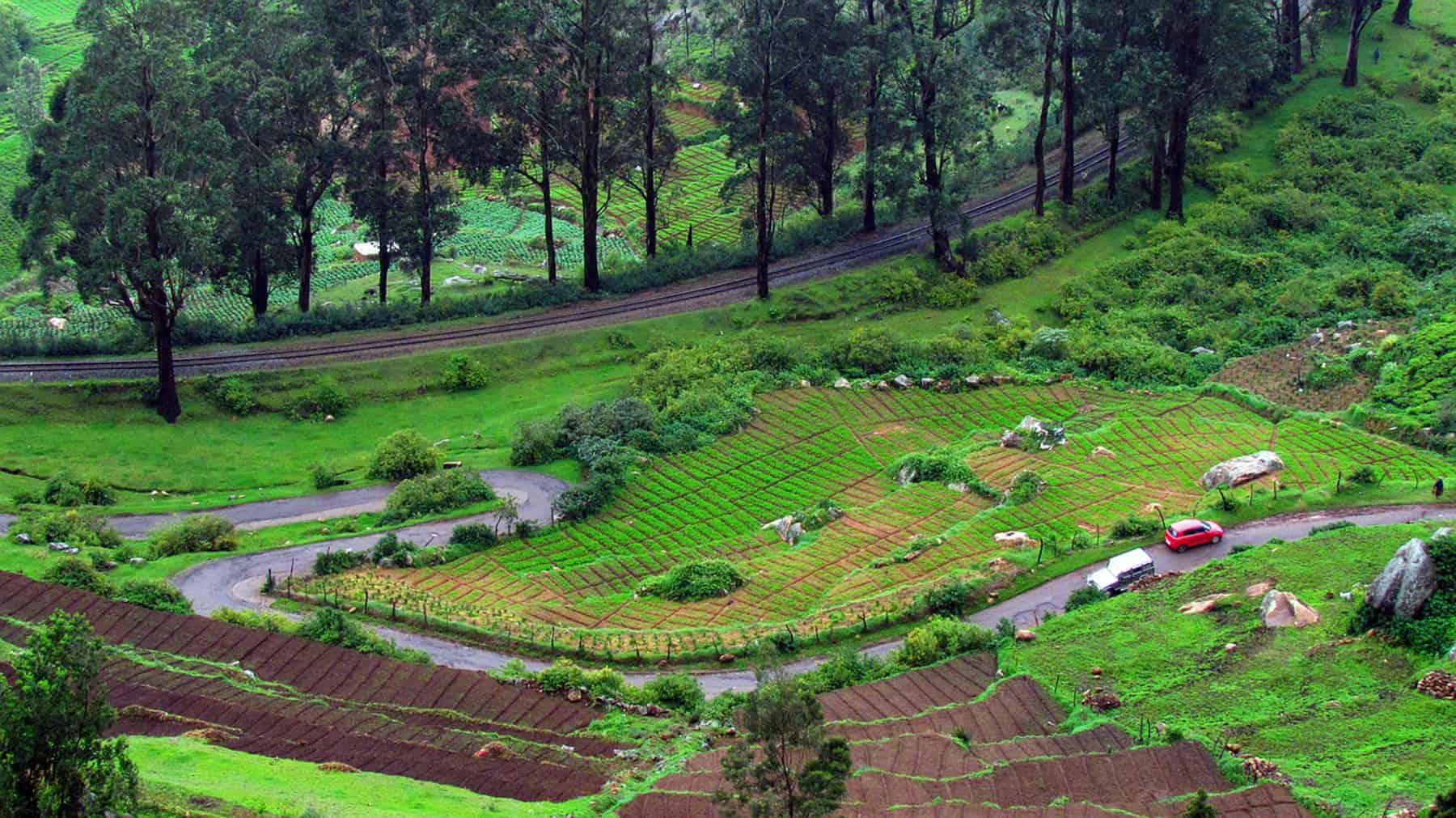 Ooty Is In The Top List Of Hill Stations In India